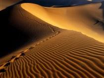 desiertos-1